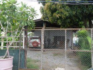 ที่ดินลำลูกกา คลอง3 ปลูกบ้านได้ ซอยเปียนนท์ 74 วาพร้อมโกดังเก็บสินค้าชั้นเดียว