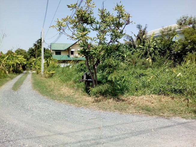 ที่ดินถนนเฉลิมพระเกียรติ เขตประเวศ ใกล้ถนนพัฒนาการตัดใหม่ ถนนอ่อนนุช ถนนศรีนครินทร์ วงแหวนตะวันออกบางนา บางปะอิน