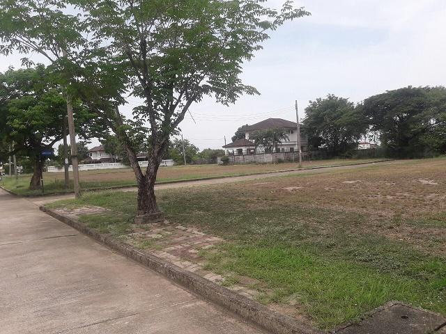 ที่ดินปิ่นเกล้า ตลิ่งชัน สาย2 หมู่บ้านกฤษดานคร 20 ที่ดิน 359 วา ใกล้ถนนบรมราชชนนี ปิ่นเกล้า ถนนกาญจนาภิเษก วงแหวนตะวันตก