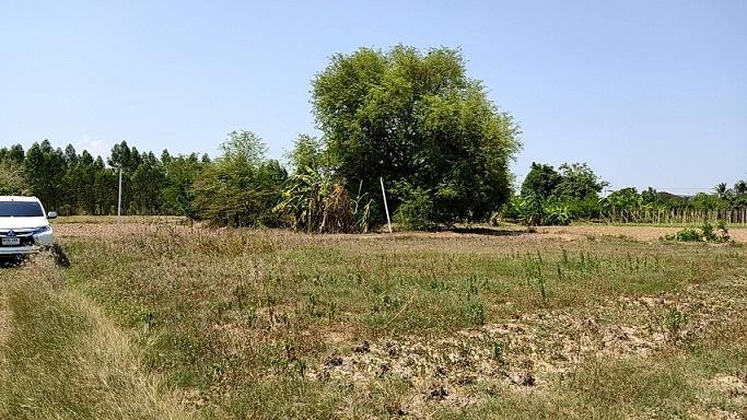 ที่ดินราชบุรี ที่ดินเมืองราชบุรี ที่ดินตำบลดอนแร่ ขายรวม 6 ไร่กว่า 2.5 ล้าน ห่างแยกห้วยชินสีห์ราชบุรี ถนนเพชรเกษม ประมาณ 5 นาที